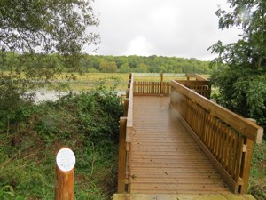 viewing platform over looking heron meadow at nene park