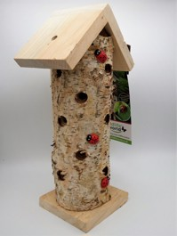 hibernating ladybird tower