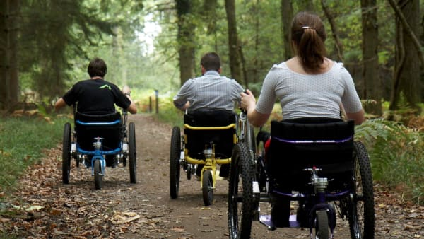 group enjoying mountain trikes in a woodland trail