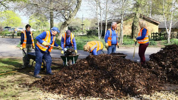 Conservation volunteers working in the Park