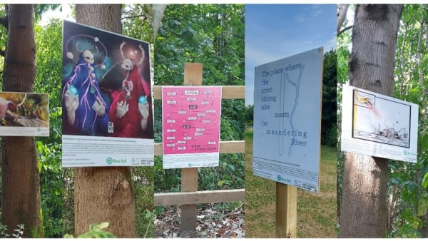 artwork displayed in nene park